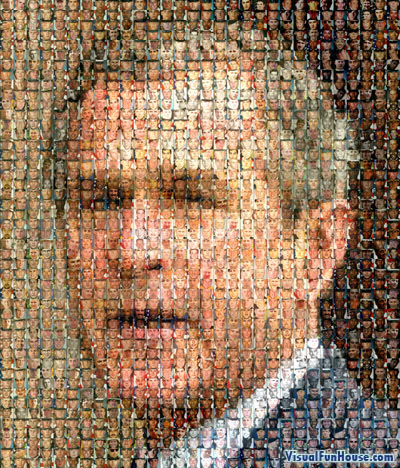 Bush Mosaic Illusion