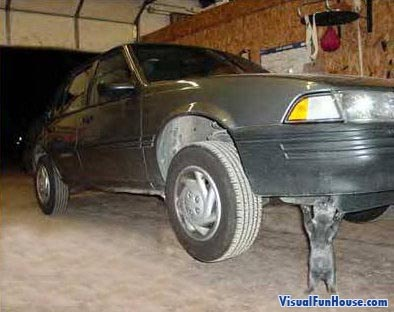 Cat Lifting Car Optical Illusion