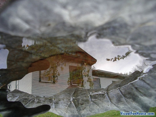 House Reflection Illusion