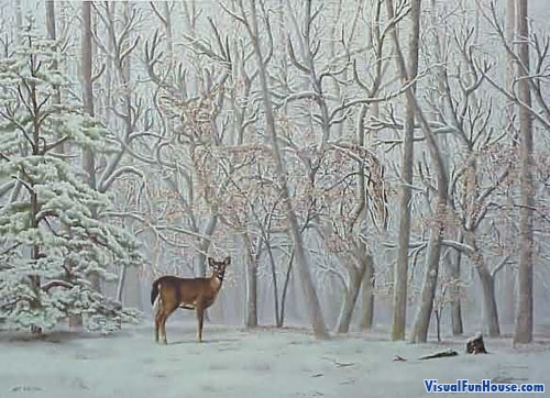 Hidden Deer Optical Illusion