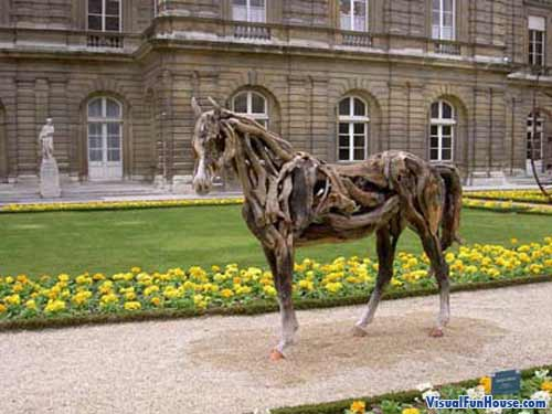 Drift Wood horse