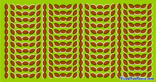 Static Movement Optical Illusion