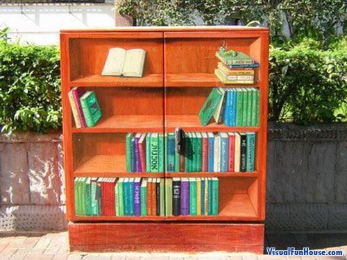 Book Shelve Painted Electrical Box Illusion