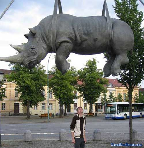 Giant hanging rhino statue in Potsdam, I sure hope it doesn </p> <span style=