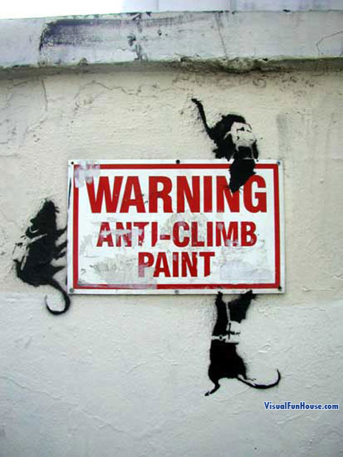 Rats on anti Climb paint street art