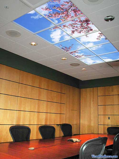 Virtual Skylight brightens up your office and gives it a more cheer atmosphere.