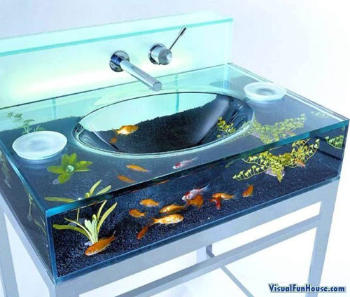 Modern bathroom sink turned into a giant fish tank
