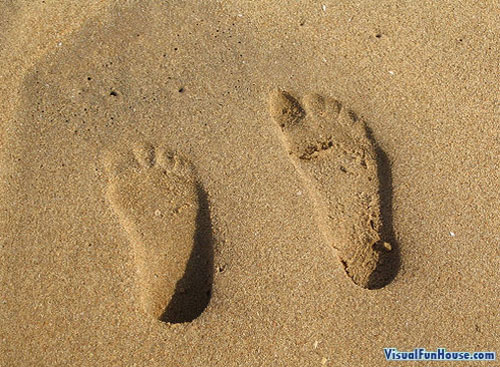 Convex or Concave footprints in the sand.