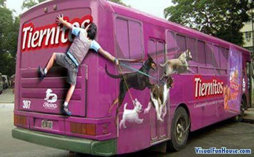Ouch, he smacked into the back of the bus, those dogs sure like their Tiernitos