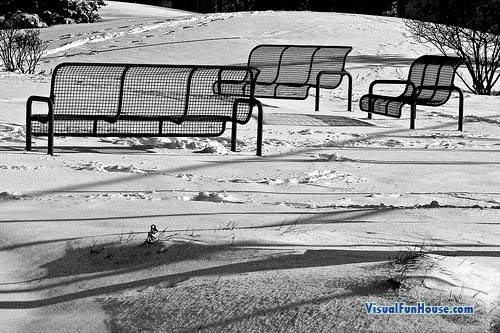 Park Bench Optical Illusion
