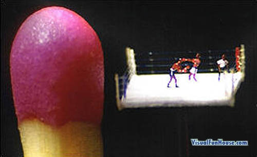 Miniature Boxing Ring